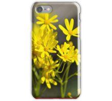 Wild Daisies iPhone Case/Skin