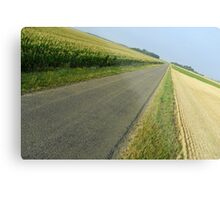 Straight country road Metal Print