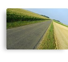 Straight country road Canvas Print