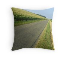 Straight country road Throw Pillow