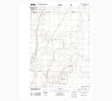 USGS Topo Map Oregon Masten Butte 20110715 TM Kids Tee