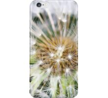 Dandelion Feathers (iPhone & iPod case) iPhone Case/Skin