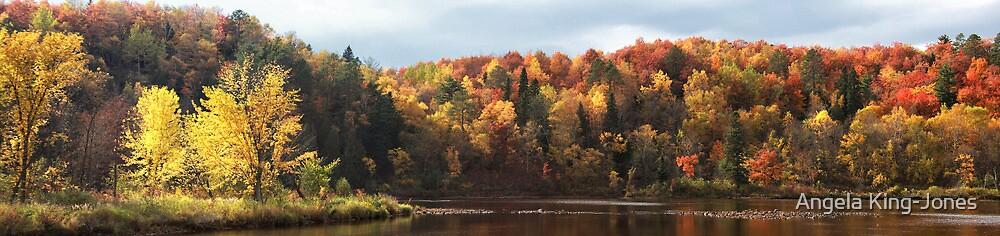 Autumn pano by Angela King-Jones