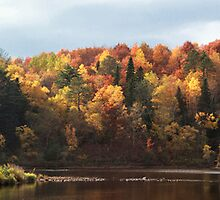 Autumn pano by Angela King-Jones