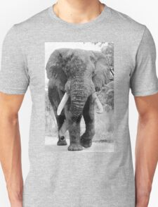 The Giant T-Shirt