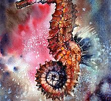 Sea Horse by Peter Williams