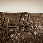 The wheels from an old farmland wagon by justaphotonoob
