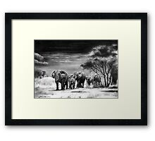 Heart Of Africa Framed Print