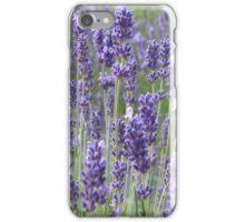 Lavender iphone case iPhone Case/Skin