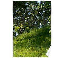 Hillside Poster