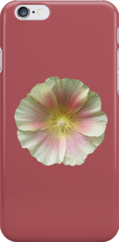 White & Pink Hollyhock for iPhone by Philip Mitchell