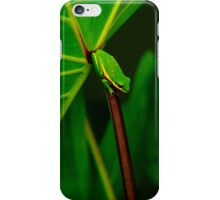 It's Good To Be Green iPhone Case/Skin