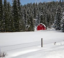 Red barn in snow by Philippe Widling