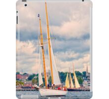Under Cloudy Skies iPad Case/Skin