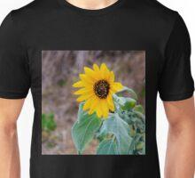 Gorgeous yellow sunflower Unisex T-Shirt