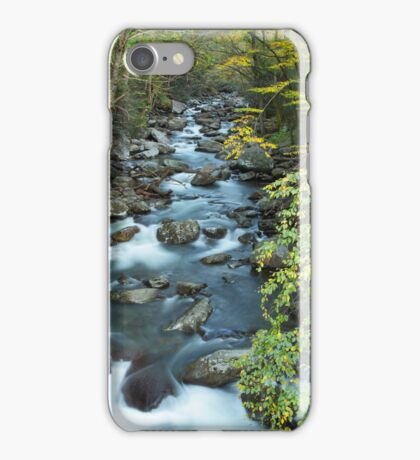 i West Prong Little Pigeon River iPhone Case/Skin