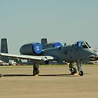 A-10 Grounded by stratus1