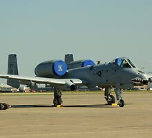 A-10 Grounded by Rick Bott