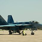 F-18 Grounded by stratus1