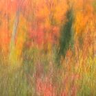 Monet in Northern Wisconsin by Gina Ruttle  (Whalegeek)