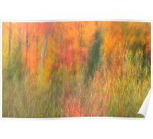 Monet in Northern Wisconsin Poster