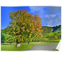 Yorkshire: The Colours of Autumn Poster