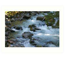 nooksack river rapids, washington, usa Art Print