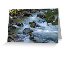 nooksack river rapids, washington, usa Greeting Card