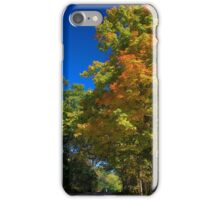 Maple Tree at Maple Lake iPhone Case/Skin