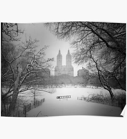 Central Park - Winter Wonderland Poster