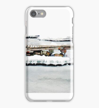 no ducks, iPhone case iPhone Case/Skin