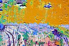 Wild Meadows by richman