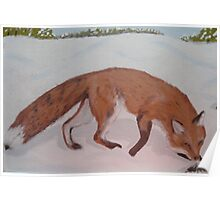 Red Fox, nosing a Push-up, Painting Poster