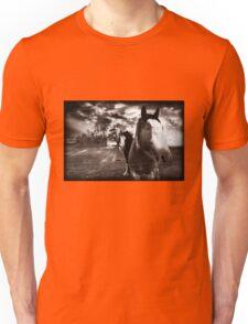 Horses 1 T shirt Unisex T-Shirt