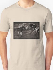 Horses 2 Tshirt Unisex T-Shirt