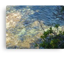 Shallow Water Canvas Print
