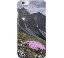kalkkogel iPhone Case/Skin