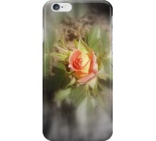 peach yellow two tone rosebud  iPhone Case/Skin