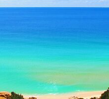 Paradise Blue by Michael John