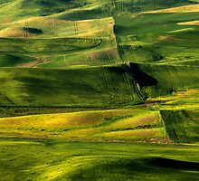 Patterns of the Land by DawsonImages