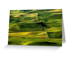Patterns of the Land Greeting Card