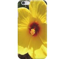 Hibiscus iPhone Case iPhone Case/Skin