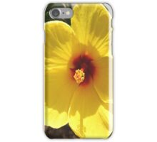 Hibiscus iPhone Case iPhone Case/Skin