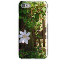 Garden Gate - SMALLTOWN USA series ^ iPhone Case/Skin