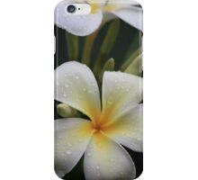 iPhone cover Kauai flower iPhone Case/Skin