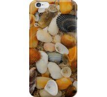 Shells iPhone Case/Skin