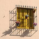 Yellow Shutters in La Boca by John Dalkin