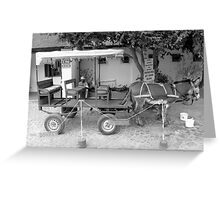 Donkey Taxi ... Greeting Card