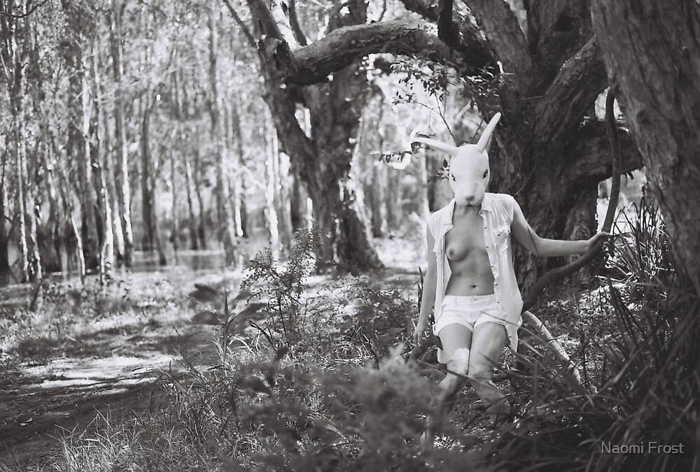 The Rabbit Swing by Naomi Frost