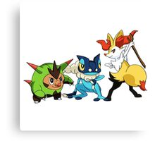 pokemon starter 4 Canvas Print